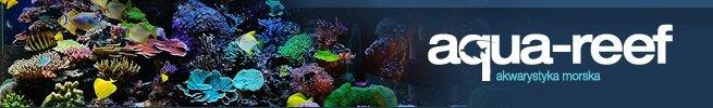 Forum Aqua-Reef.pl - Akwarystyka morska