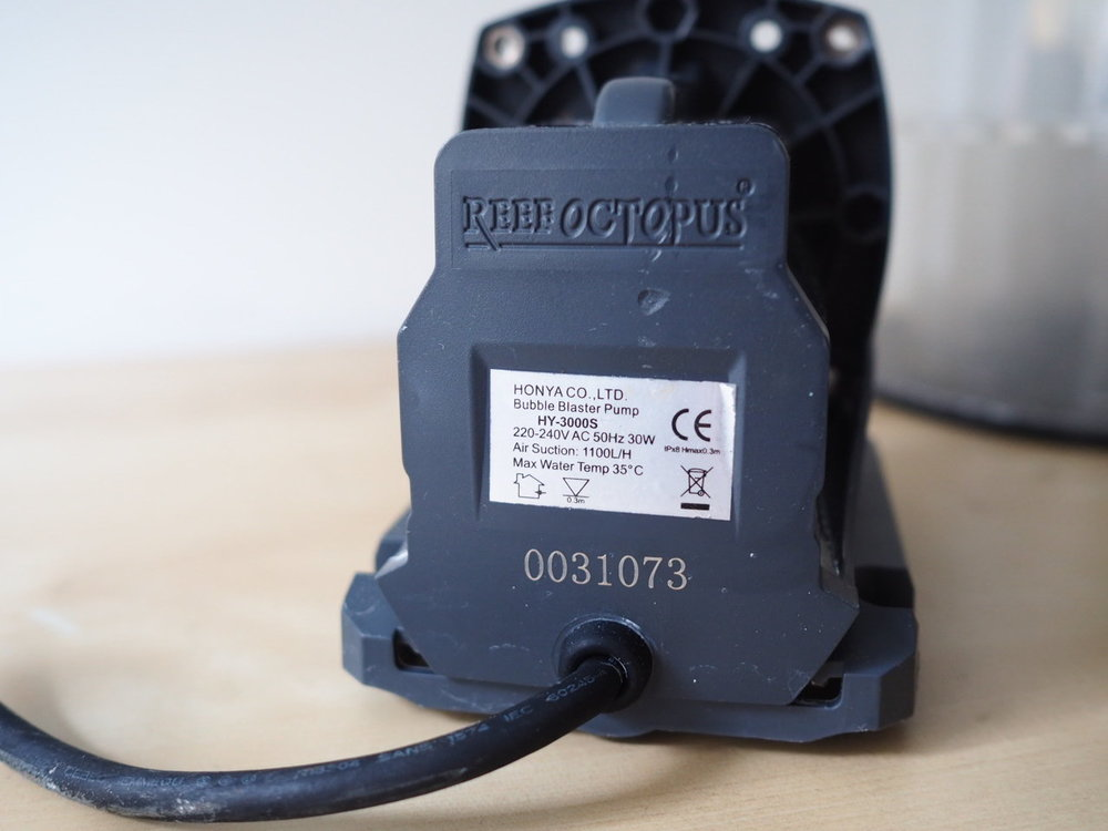P6080466.JPG